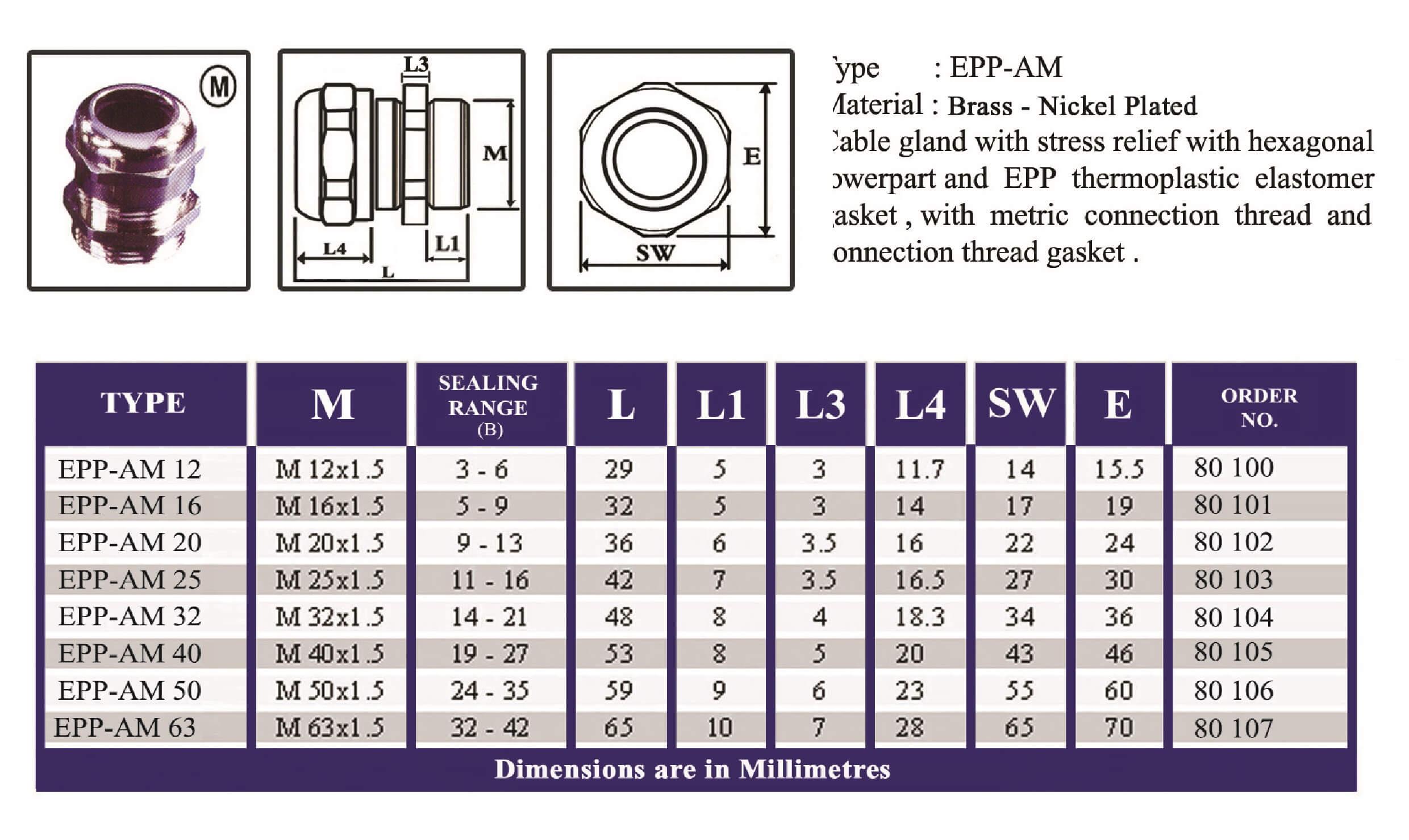 E.P.P - AM Technical Datasheet