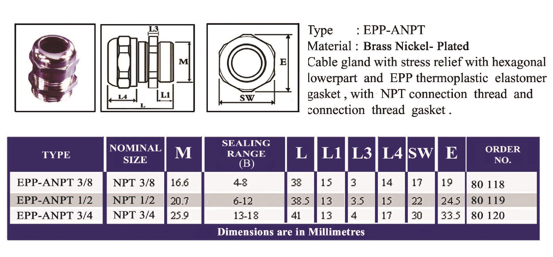 E.P.P - ANPT Technical Datasheet